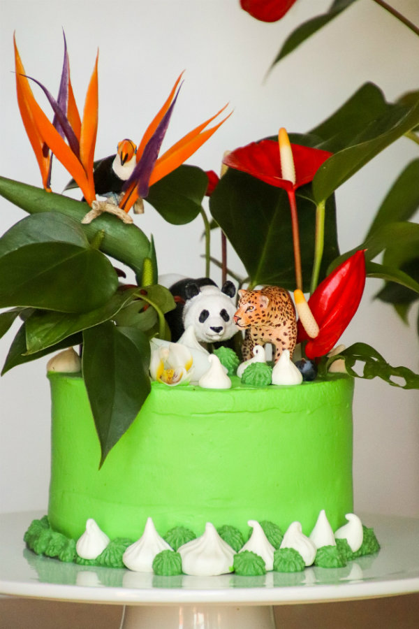 anniversaire jungle enfant